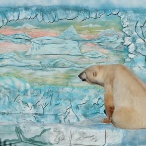вольер белых медведей_0769